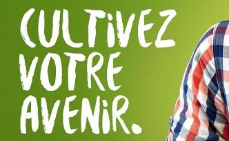 Création de la nouvelle charte graphique pour le lycée agricole de Précieux.
