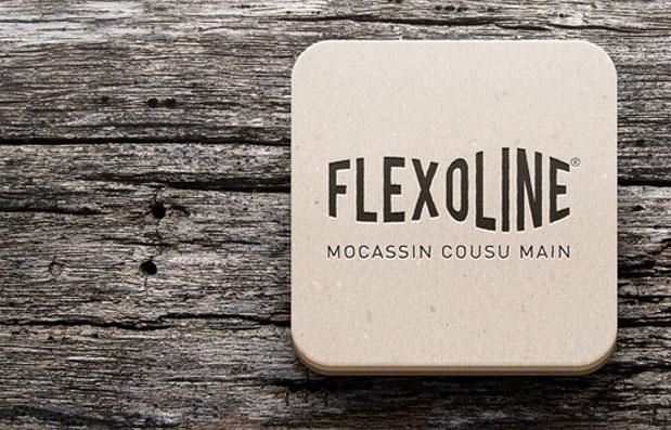 Création du logo Flexoline